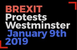Yellow Jacket protests – January 2019