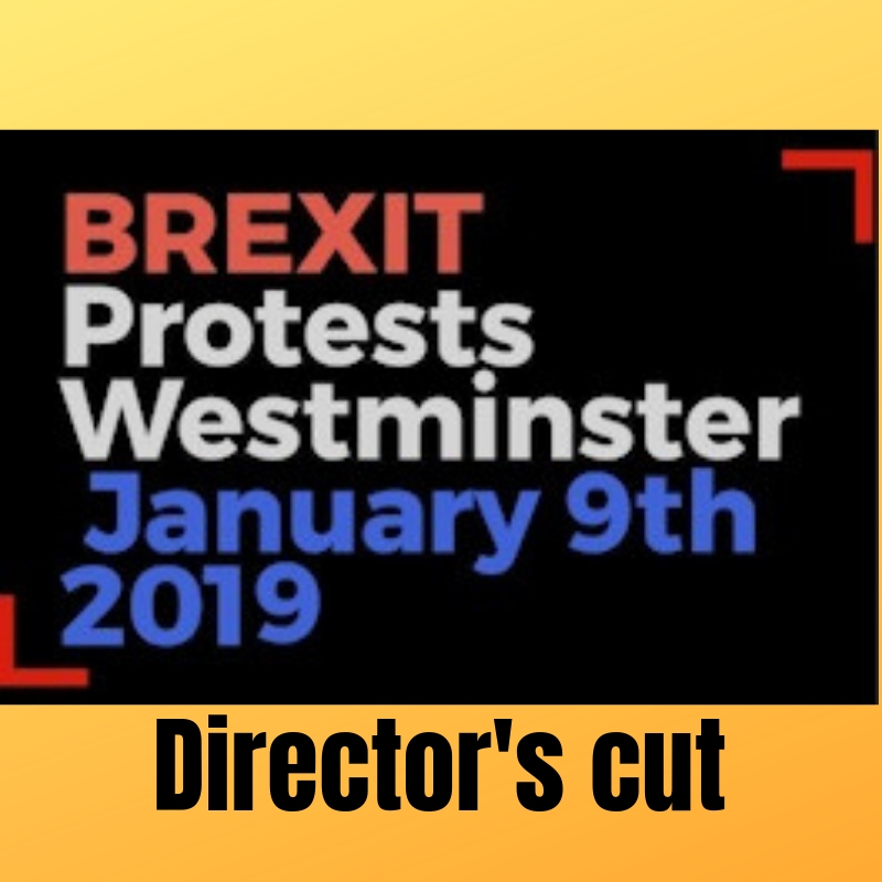 Brexit protesters and Yellow Jackets – 9th January 2019 – DIRECTOR'S CUT